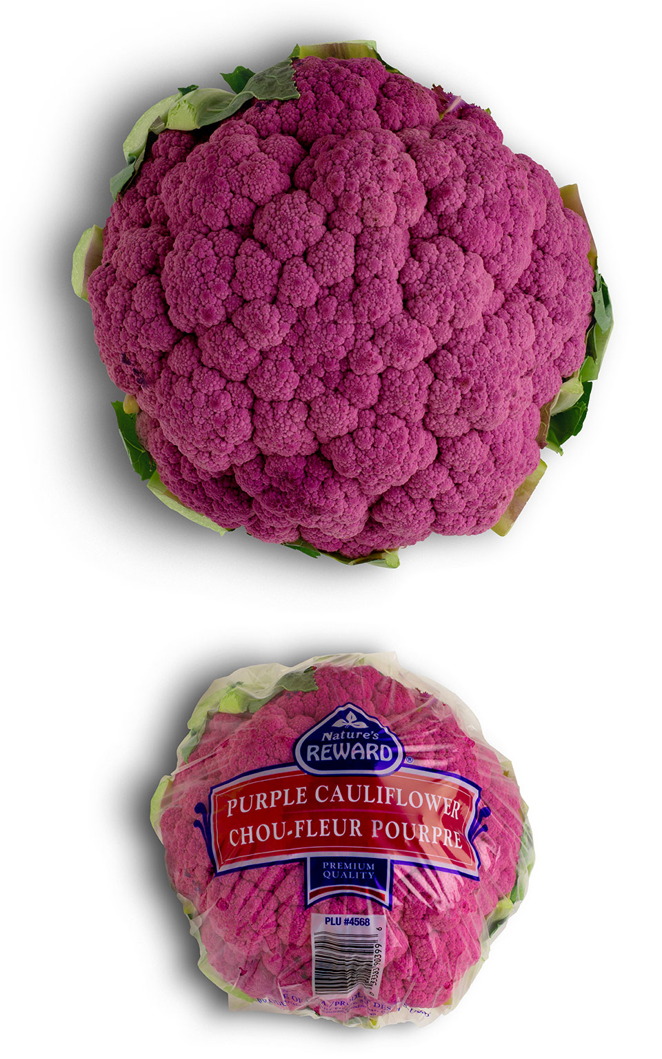 purple-cauliflower-natures-reward